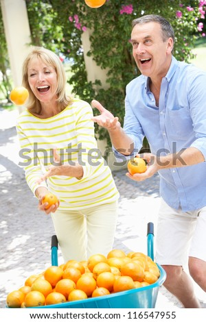 Senior Couple Juggling Oranges In Front Of Wheelbarrow