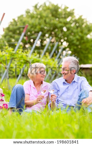 Senior Couple of man and woman having picnic on summer meadow drinking wine in vineyard - stock photo