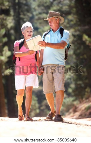 Senior couple reading map on country walk - stock photo