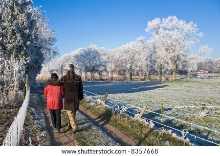 senior couple strolling in a winter landscape - stock photo