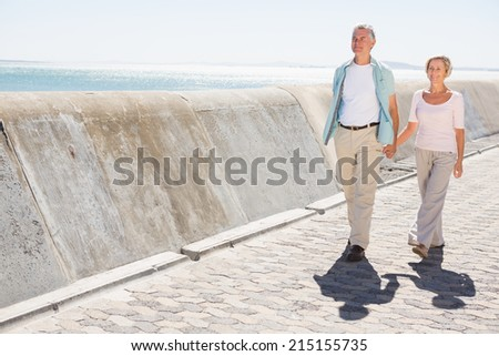 Senior couple walking and holding hands on a sunny day - stock photo