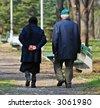 SENIOR COUPLE WALKING AT THE PARK - stock photo