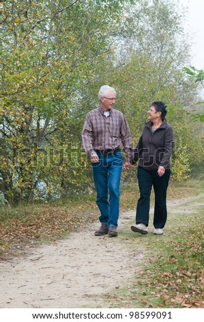 Senior couple walking in the forest - stock photo