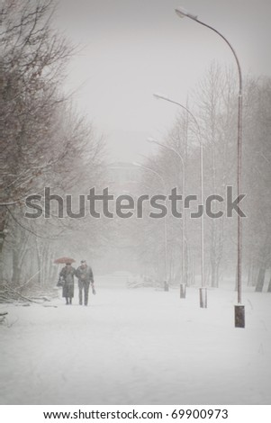 Senior couple walking in the park in the winter - stock photo