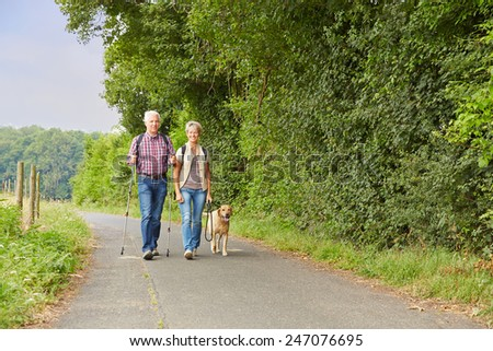 Senior couple walking the dog in the nature in the summer - stock photo