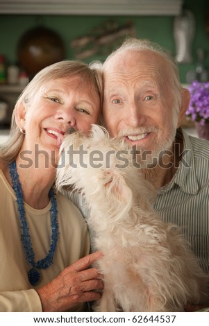 Senior couple with cute white dog - stock photo