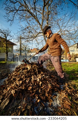 Senior farmer cleaning his garden of fallen leaves, burning them in a pile