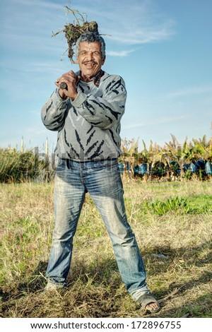 Senior farmer Holding a fork in the fields  - stock photo