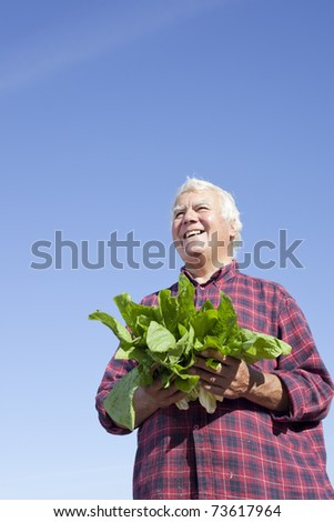 Senior farmer holding fresh vegetable with big happy smile. - stock photo