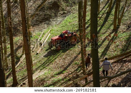 Senior farmers using a logging tractor to bring down cut trees in a forest - stock photo