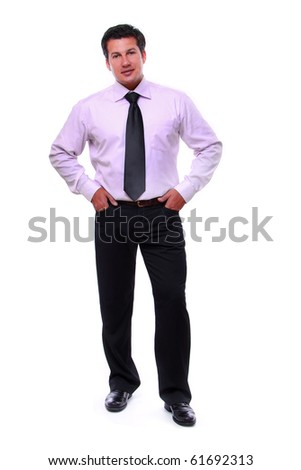 senior full length businessman - stock photo