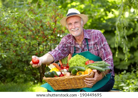 Senior gardener is presenting a big basket with vegetables