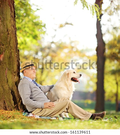 Senior gentleman and his Labrador retriever dog sitting on ground in a park, shot with a tilt and shift lens - stock photo