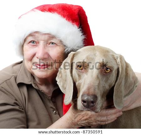 dog santa hat stock photos royalty free images vectors shutterstock. Black Bedroom Furniture Sets. Home Design Ideas