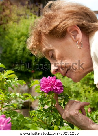 Senior lady smelling the rose of her garden - stock photo