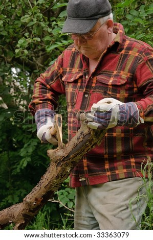 senior male cutting back tree log with axe - stock photo