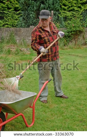 senior male raking grass and tidy up in garden - stock photo