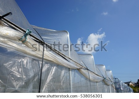 Senior man assembles greenhouse