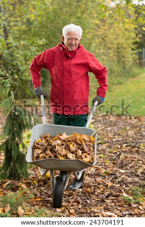 Senior man cleaning garden from leaves during autumn time - stock photo