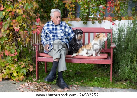Senior man cuddling two dogs on the bench in courtyard - stock photo