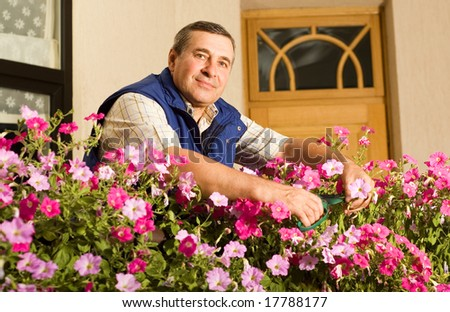 Senior man florist working in the garden - stock photo
