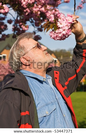 Senior man holding a branch of blossoming cherry tree - stock photo