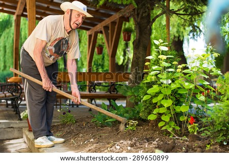Senior man in the garden - stock photo
