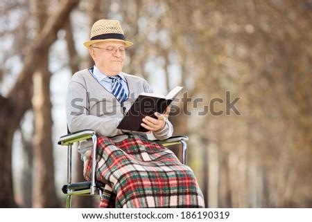 Senior man reading a book outside - stock photo