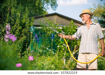 Senior man watering the garden with hose - stock photo