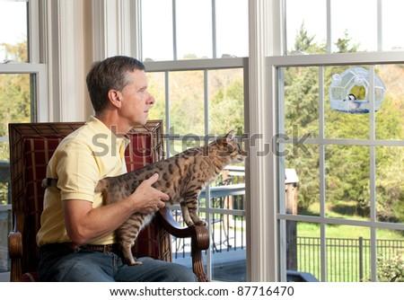 Senior man with bengal cat watching chickadee bird on birdfeeder from chair - stock photo
