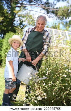 Senior man with grandkid watering plants - stock photo