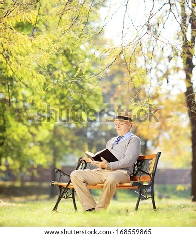 Senior man with hat sitting on a wooden bench and reading a novel, in a park, shot with a tilt and shift lens - stock photo