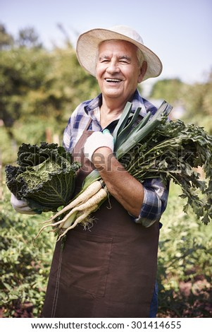 Senior man with his crops - stock photo
