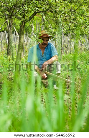 Senior peasant sit in the shade of a tree , hold a hoe and making a break from digging his ground with spring onion,green herbs in foreground,selective focus on man - stock photo
