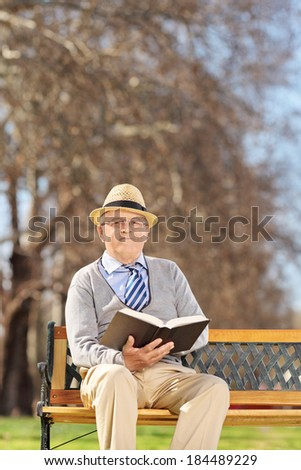 Senior reading a book in park on a sunny day seated on bench - stock photo