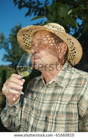 Senior vintner tasting wine outdoors in vinery. - stock photo
