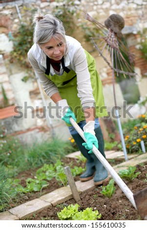 Senior woman cultivating vegetable garden - stock photo