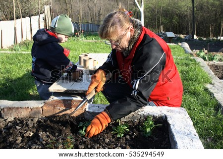 senior woman in the early spring planting flowers in the flowerbed in the garden, her grandson helped her, pulling seedlings from trays