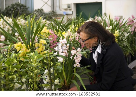 Senior woman making a purchase at plant nursery - stock photo