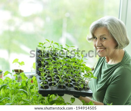 Senior woman planting green sprouts at home - stock photo