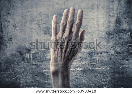 Senior woman's wrinkled hand - stock photo