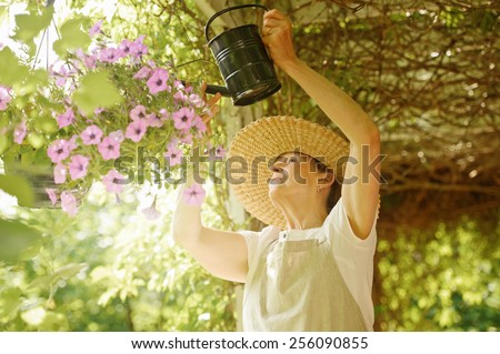 Senior woman waters the flowers in a hanging pot. She is standing under a vine covered pergola. Digital filters and flare. - stock photo