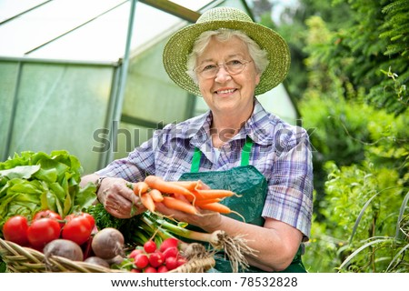 Senior woman with a basket of harvested vegetables against a hothouse - stock photo