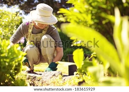 Senior woman with gardening tool working in her backyard garden - stock photo