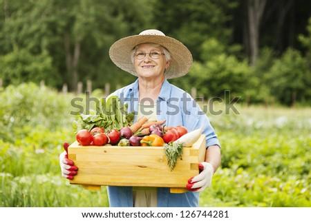 Senior woman with vegetables - stock photo