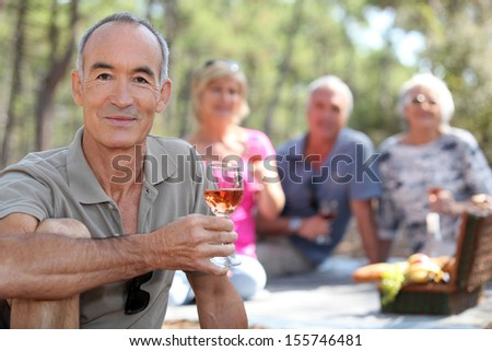 Seniors Picnic in the field - stock photo