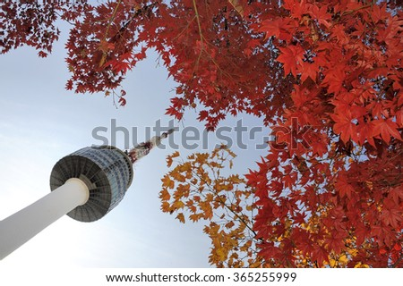 Seoul Tower and red autumn maple leaves at Namsan mountain in South Korea - stock photo