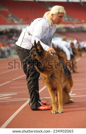 SEP 07, 2014 Nurnberg Biggest german shepherd dog show in Germany. Participants having rest before competition. - stock photo