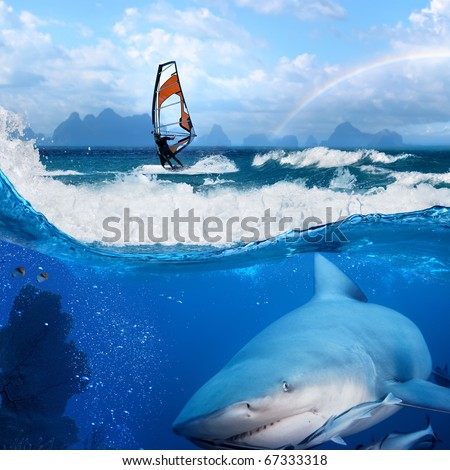 Separated image. Story about ocean and windsurfer on a board  under sail and angry hungry bull-shark swimming underwater - stock photo