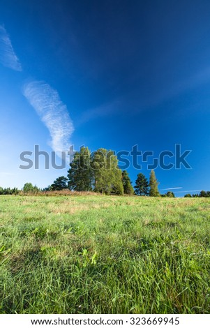 Serene landscape photo of trees and meadow at sunrise - stock photo